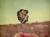 verily-so