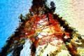 Acid Food (ep) - Acid Food