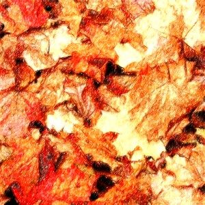 The Autumn Leaves Fall in (ep) – The Autumn Leaves Fall in