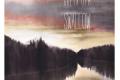 Swallow - Greta Olm