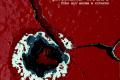 Fino all'anima e ritorno - Anonima Noire