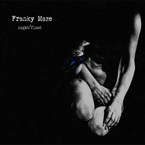 Franky Maze Night_Flood