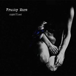 Franky Maze Night_Flood